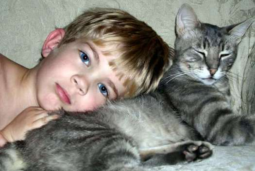 boy-and-cat-1310856