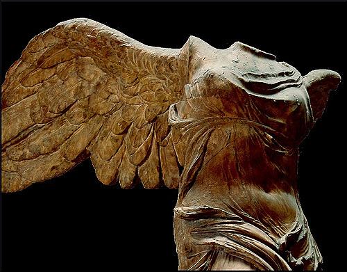 winged2