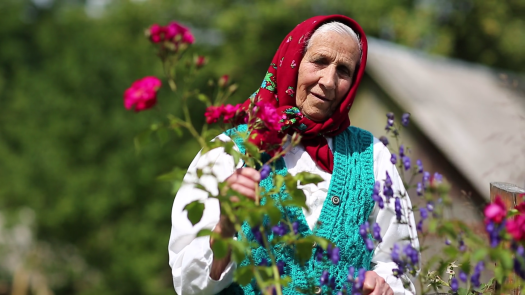old-woman-stands-in-flowers-near-his-house-and-looks-at-the-camera-ukrainian-elderly-woman-in-red-headscarf-stands-near-wooden-hut-and-looks-at-the-camera-female-looks-at-the-camera-and-